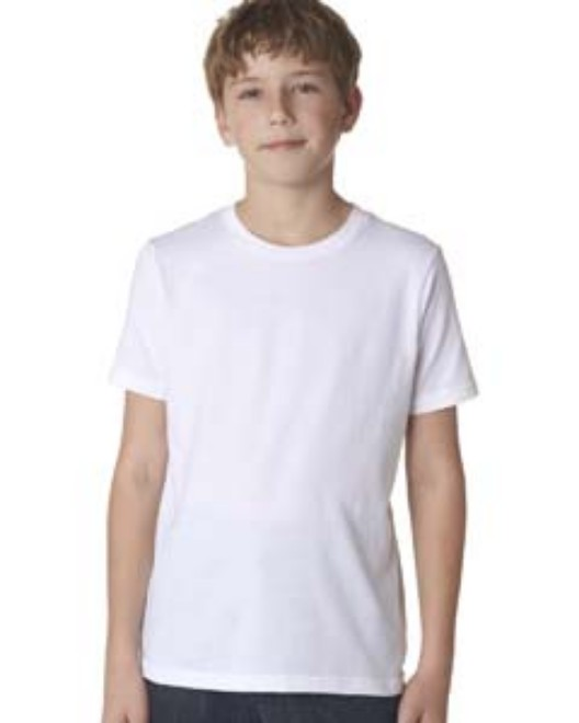 Picture of Next Level 3310 Youth Boys' Cotton Crew