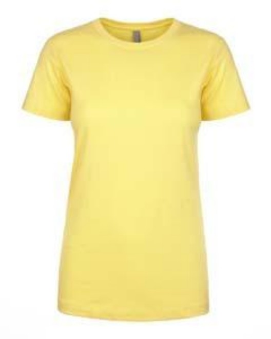 Picture of Next Level N1510 Womens Ideal T-Shirt