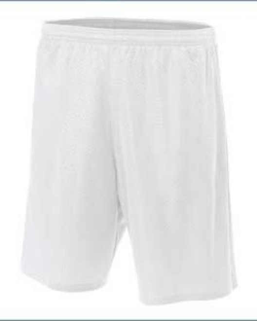 Picture of A4 N5296 Adult Nine Inch Inseam Mesh Short